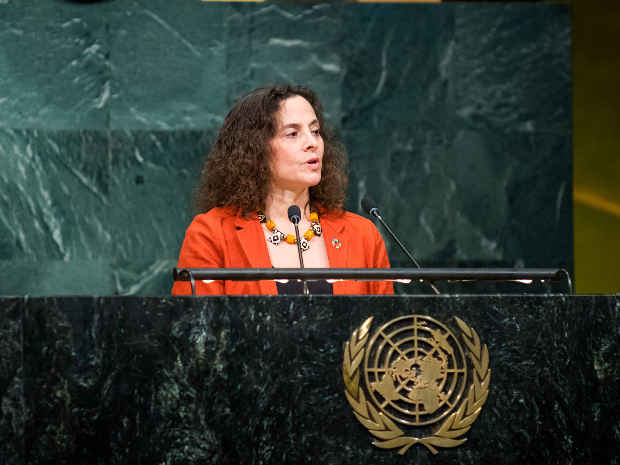 Pamela Chasek at the United Nations